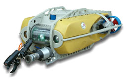 Remotely Operated Underwater Vehicles